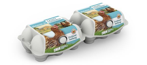 Freiland-Eier – 6er Packung